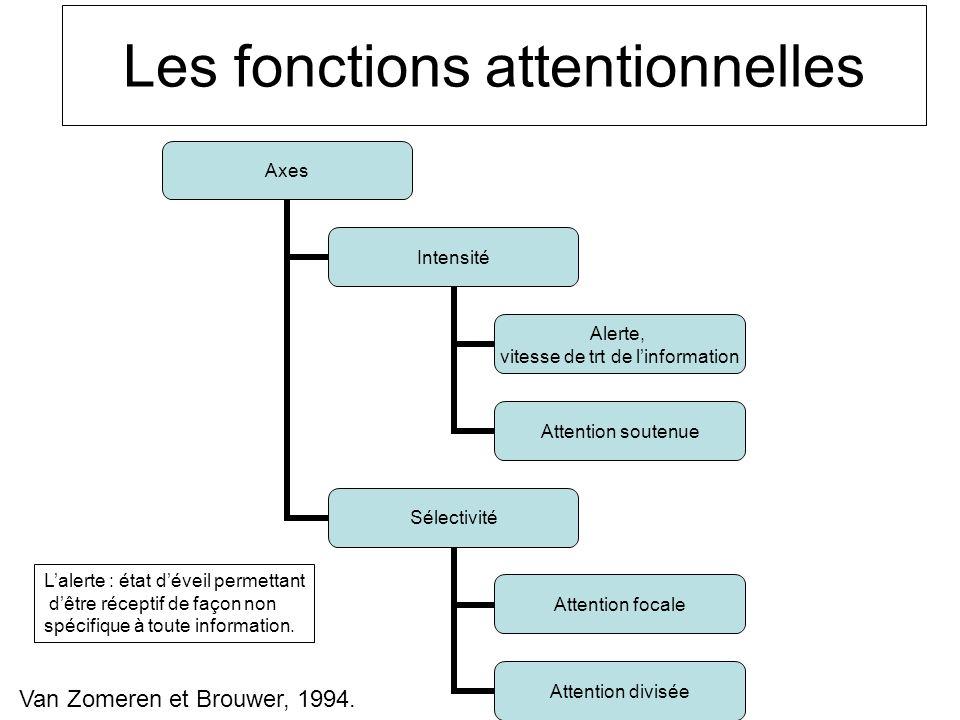 Les fonctions attentionnelles Axes Intensité Alerte, vitesse de trt de linformation Attention soutenue Sélectivité Attention focale Attention divisée