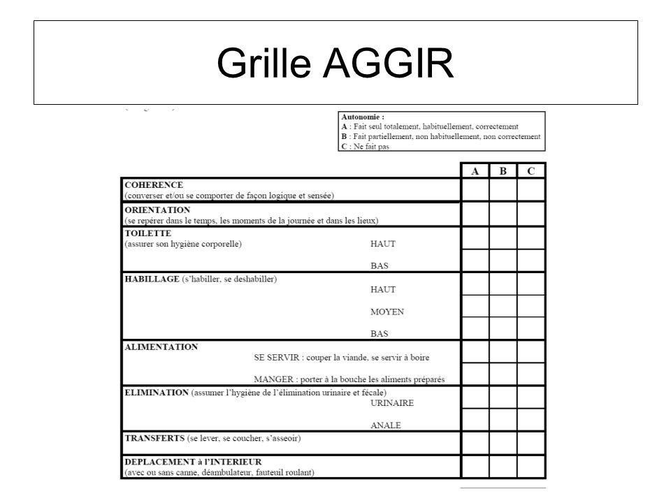 Grille AGGIR