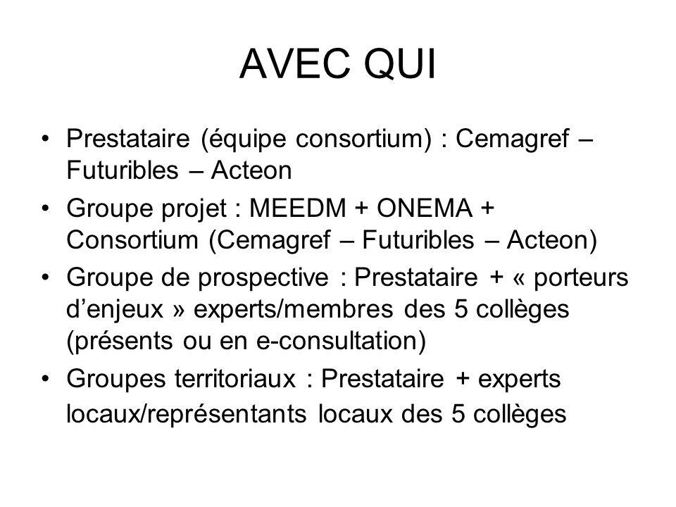 AVEC QUI Prestataire (équipe consortium) : Cemagref – Futuribles – Acteon Groupe projet : MEEDM + ONEMA + Consortium (Cemagref – Futuribles – Acteon)