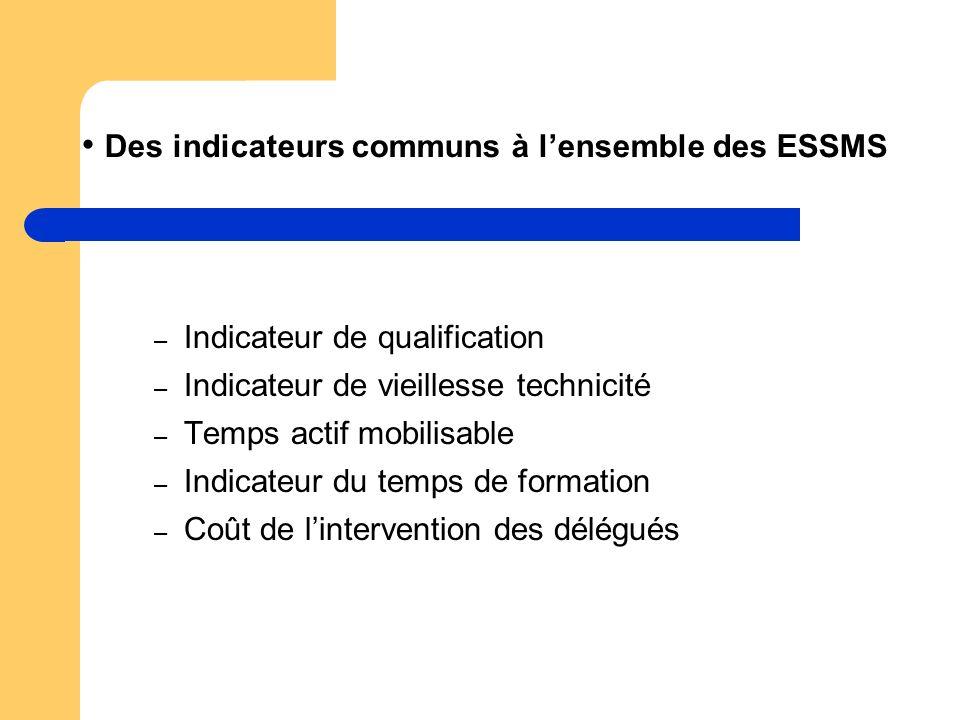 Des indicateurs communs à lensemble des ESSMS – Indicateur de qualification – Indicateur de vieillesse technicité – Temps actif mobilisable – Indicate