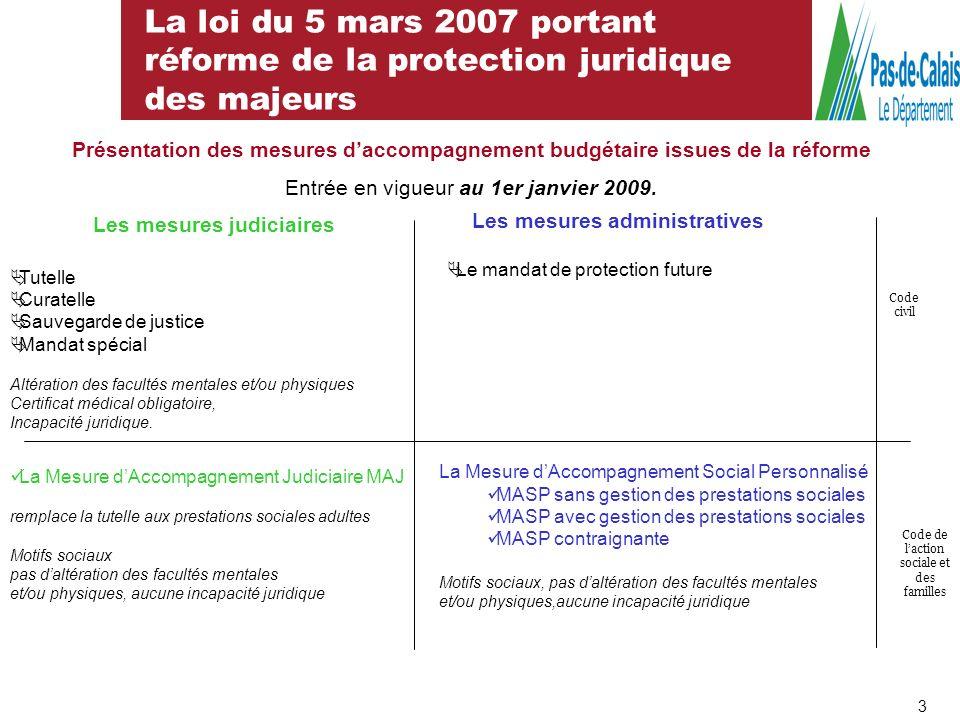 La loi du 5 mars 2007 portant réforme de la protection juridique des majeurs Les mesures judiciaires Tutelle Curatelle Sauvegarde de justice Mandat sp