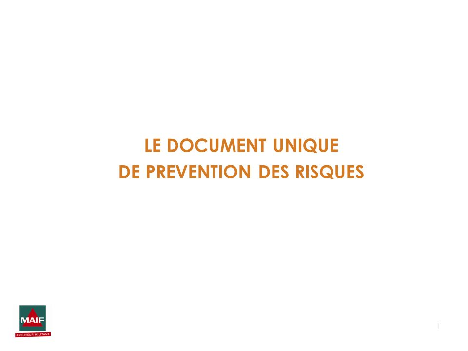 1 LE DOCUMENT UNIQUE DE PREVENTION DES RISQUES