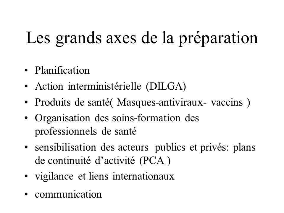 Les grands axes de la préparation Planification Action interministérielle (DILGA) Produits de santé( Masques-antiviraux- vaccins ) Organisation des so