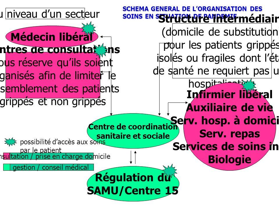SCHEMA GENERAL DE LORGANISATION DES SOINS EN SITUATION DE PANDEMIE Structure intermédiaire (domicile de substitution) pour les patients grippés isolés