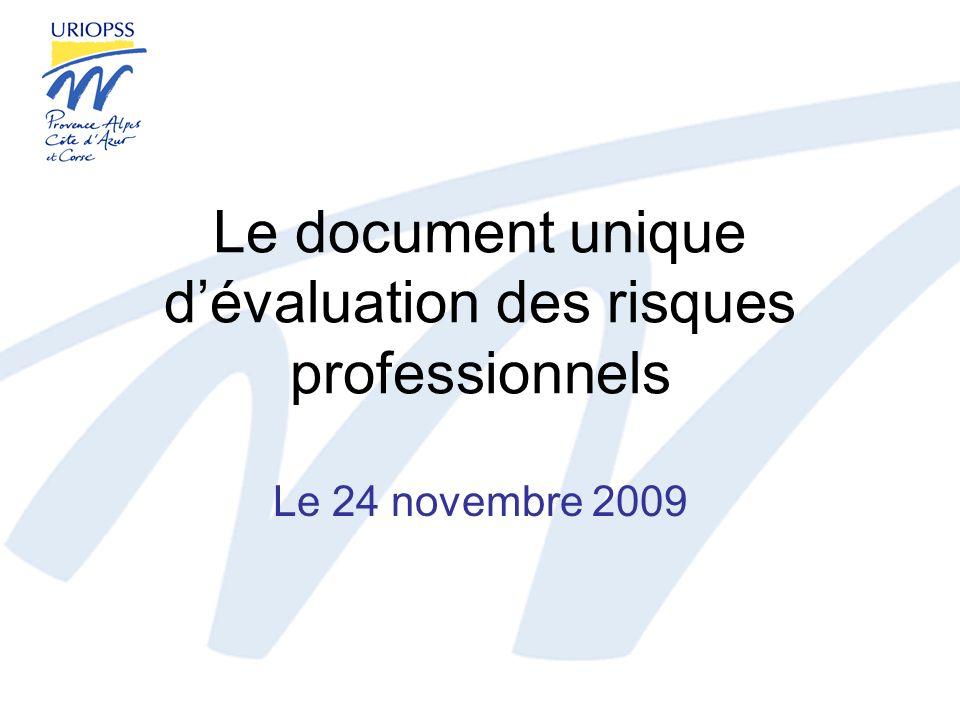 Le document unique dévaluation des risques professionnels Le 24 novembre 2009