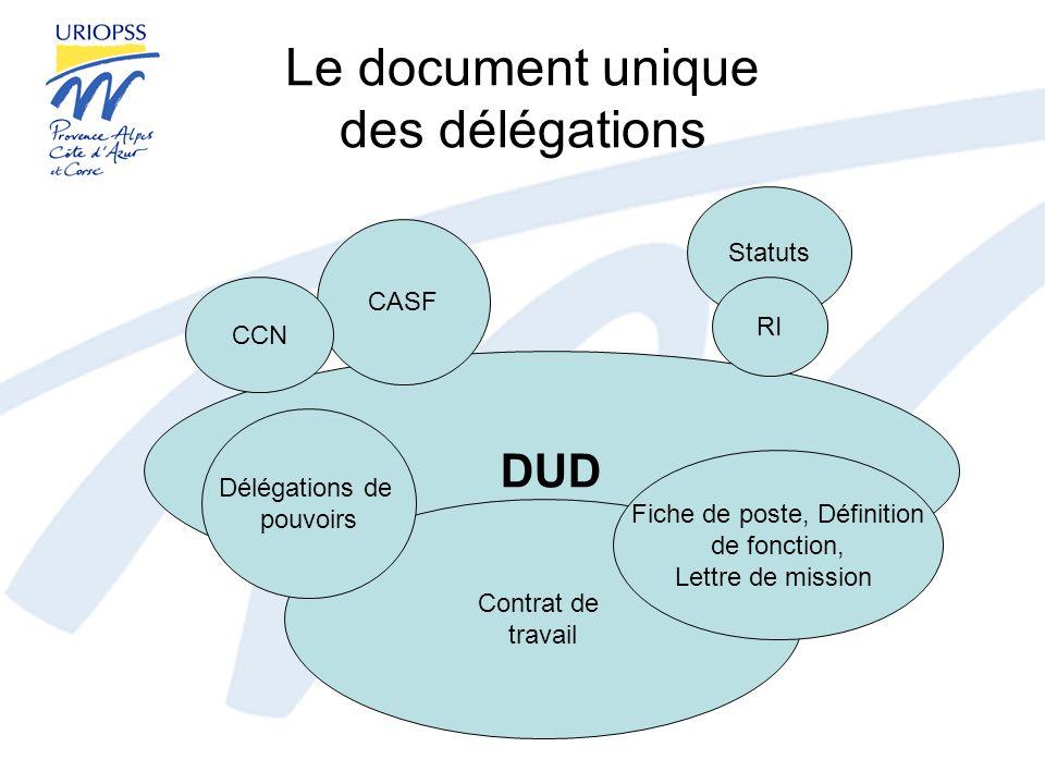 Le document unique des délégations Lécriture du document –Les étapes incontournables –Le rôle du professionnel chargé de la direction –La publicité du document La valeur juridique du document