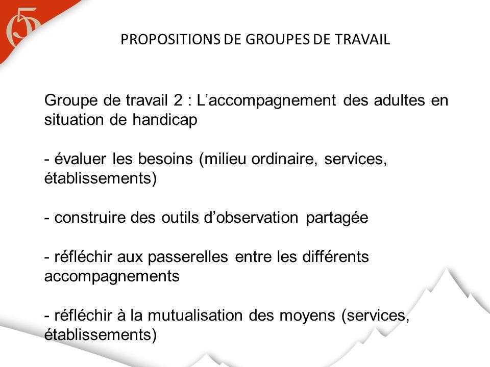 PROPOSITIONS DE GROUPES DE TRAVAIL Groupe de travail 2 : Laccompagnement des adultes en situation de handicap - évaluer les besoins (milieu ordinaire,