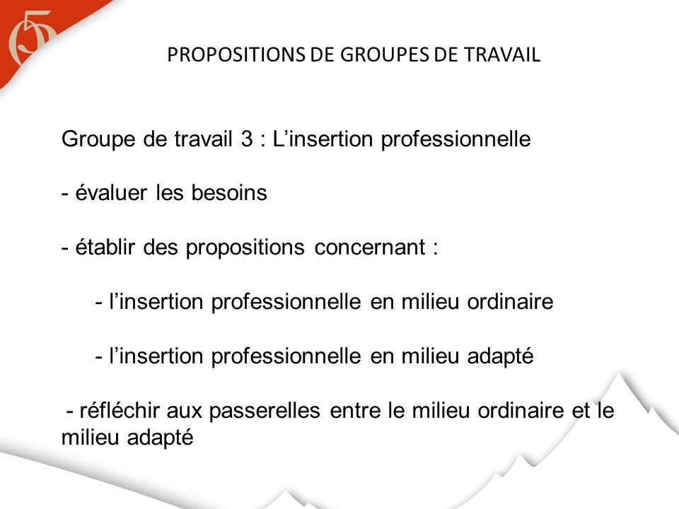PROPOSITIONS DE GROUPES DE TRAVAIL Groupe de travail 3 : Linsertion professionnelle - évaluer les besoins - établir des propositions concernant : - li