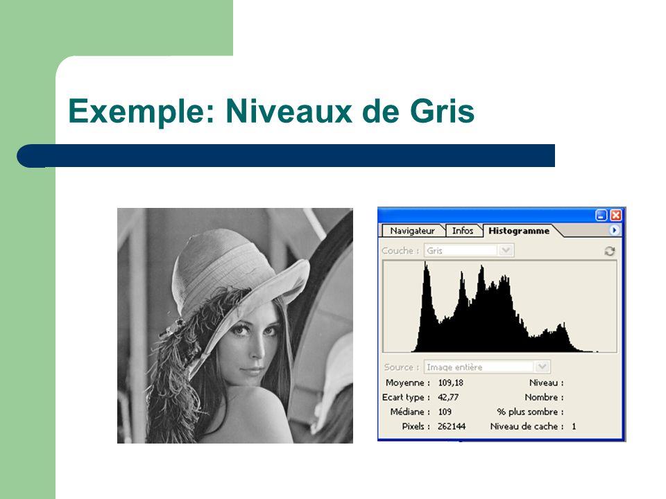 Exemple: Niveaux de Gris