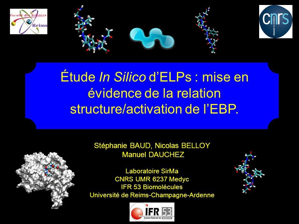 Stéphanie BAUD, Nicolas BELLOY Manuel DAUCHEZ Laboratoire SirMa CNRS UMR 6237 Medyc IFR 53 Biomolécules Université de Reims-Champagne-Ardenne Étude In