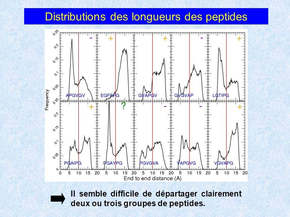 Distributions des longueurs des peptides Il semble difficile de départager clairement deux ou trois groupes de peptides.