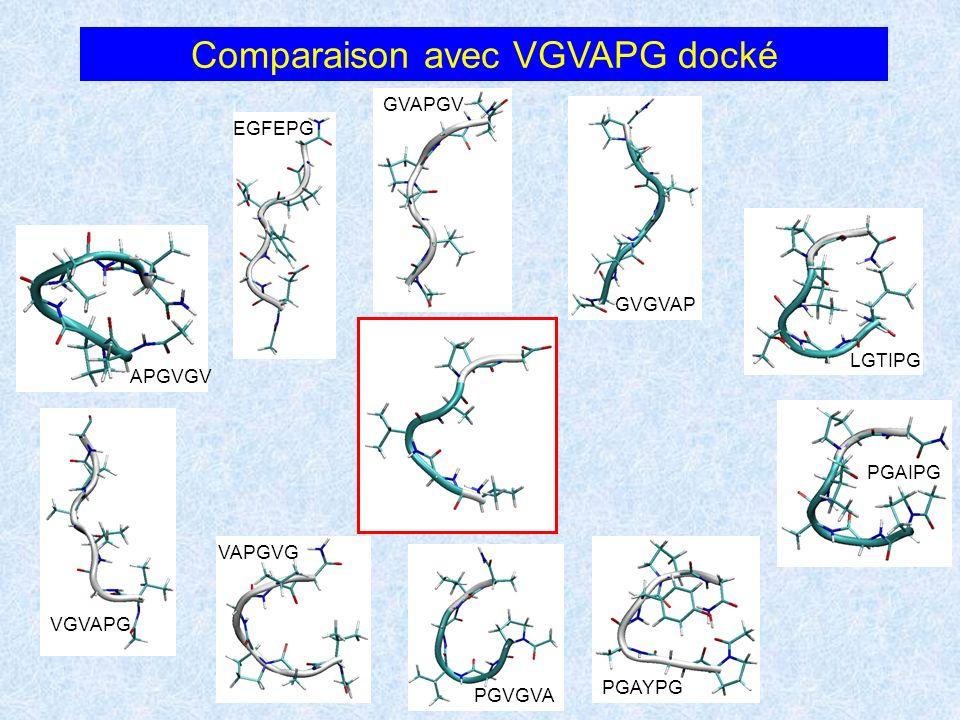 Comparaison avec VGVAPG docké APGVGV EGFEPG GVAPGV GVGVAP LGTIPG PGAIPG PGAYPGPGVGVA VAPGVG VGVAPG