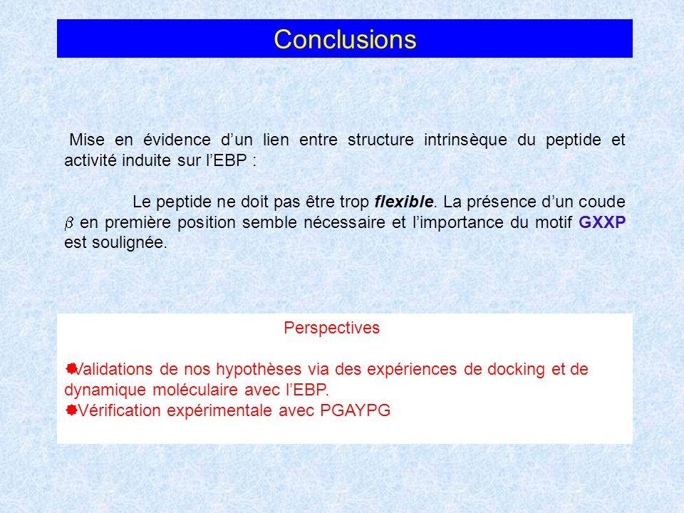 Conclusions Mise en évidence dun lien entre structure intrinsèque du peptide et activité induite sur lEBP : Le peptide ne doit pas être trop flexible.