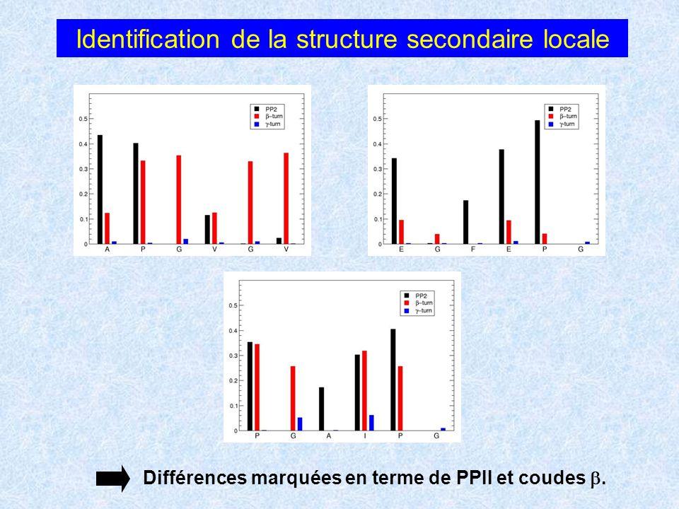 Identification de la structure secondaire locale Différences marquées en terme de PPII et coudes.