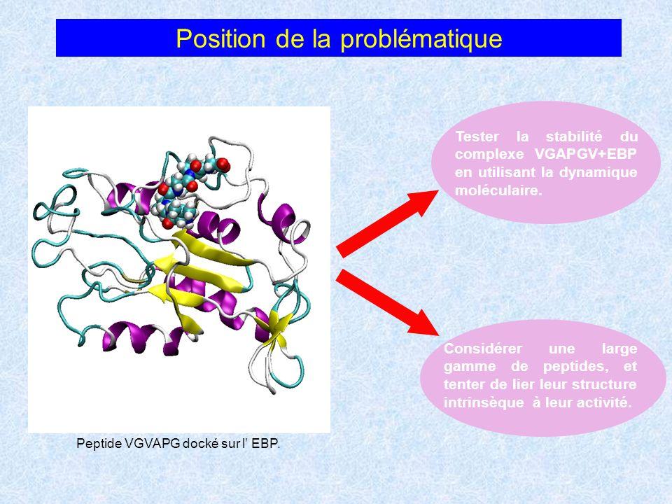 Position de la problématique Peptide VGVAPG docké sur l EBP. Tester la stabilité du complexe VGAPGV+EBP en utilisant la dynamique moléculaire. Considé