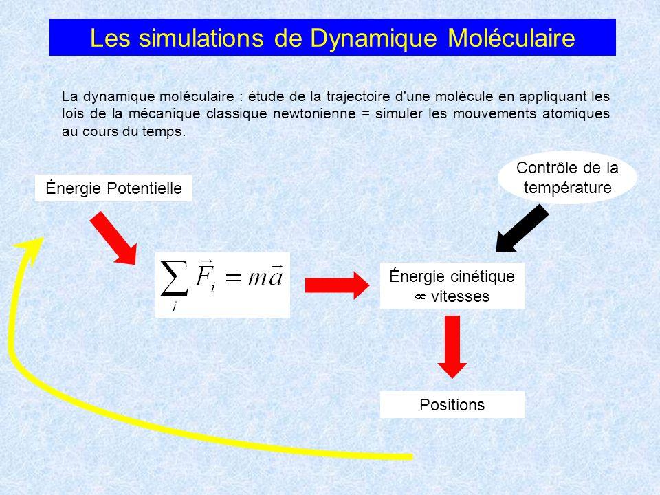 Énergie Potentielle Énergie cinétique vitesses Positions Contrôle de la température Les simulations de Dynamique Moléculaire La dynamique moléculaire