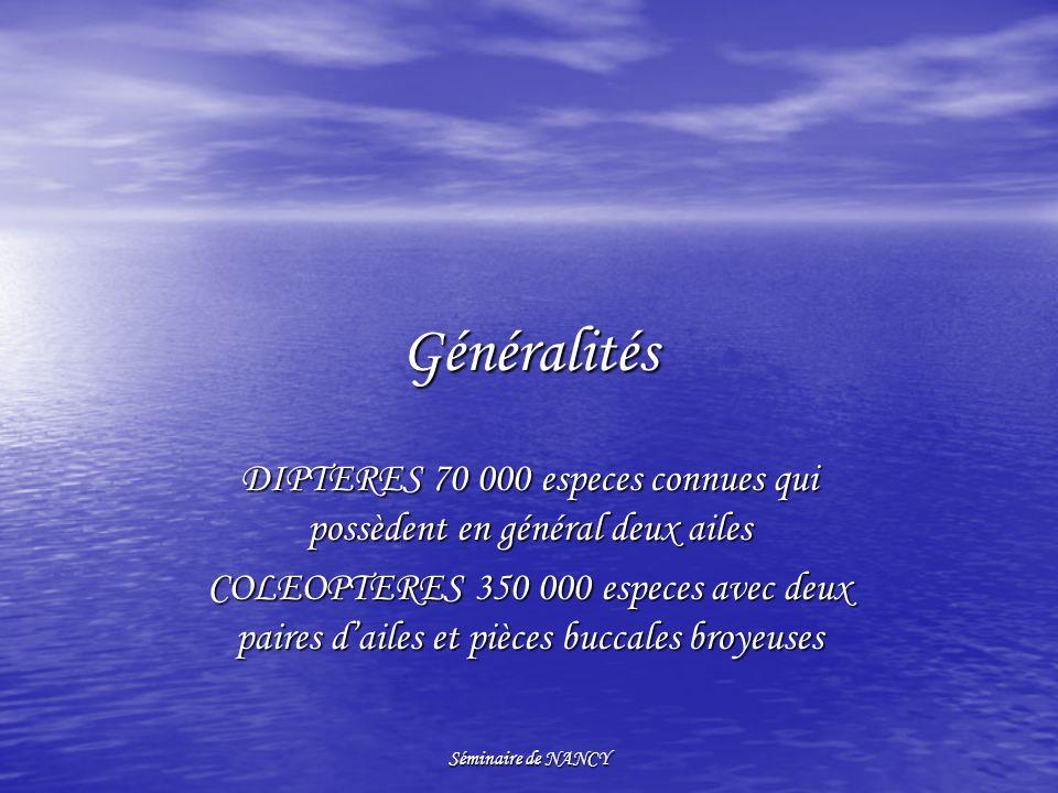 Séminaire de NANCY Généralités DIPTERES 70 000 especes connues qui possèdent en général deux ailes COLEOPTERES 350 000 especes avec deux paires dailes