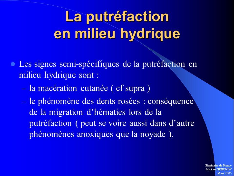 Séminaire de Nancy Mickael SEGONDY Mars 2003 La putréfaction en milieu hydrique Les signes semi-spécifiques de la putréfaction en milieu hydrique sont