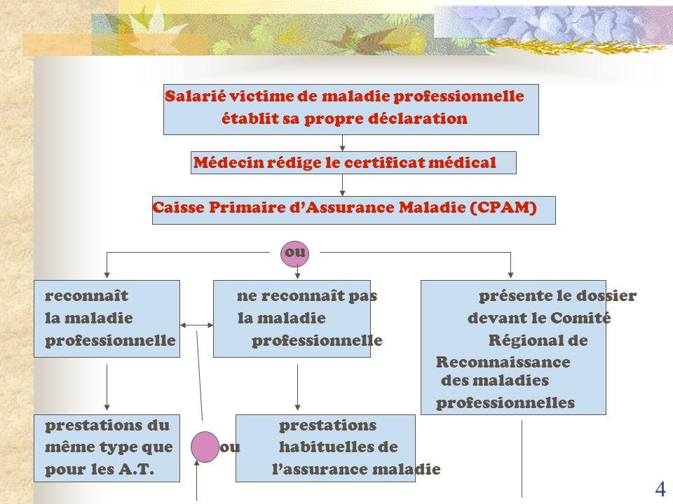 3 PRINCIPALES MALADIES PROFESSIONNELLES N° du tableau Type daffectionsNombre 57 30 et 30 bis 42 65 25 08 66 - affections périarticulaires - affections