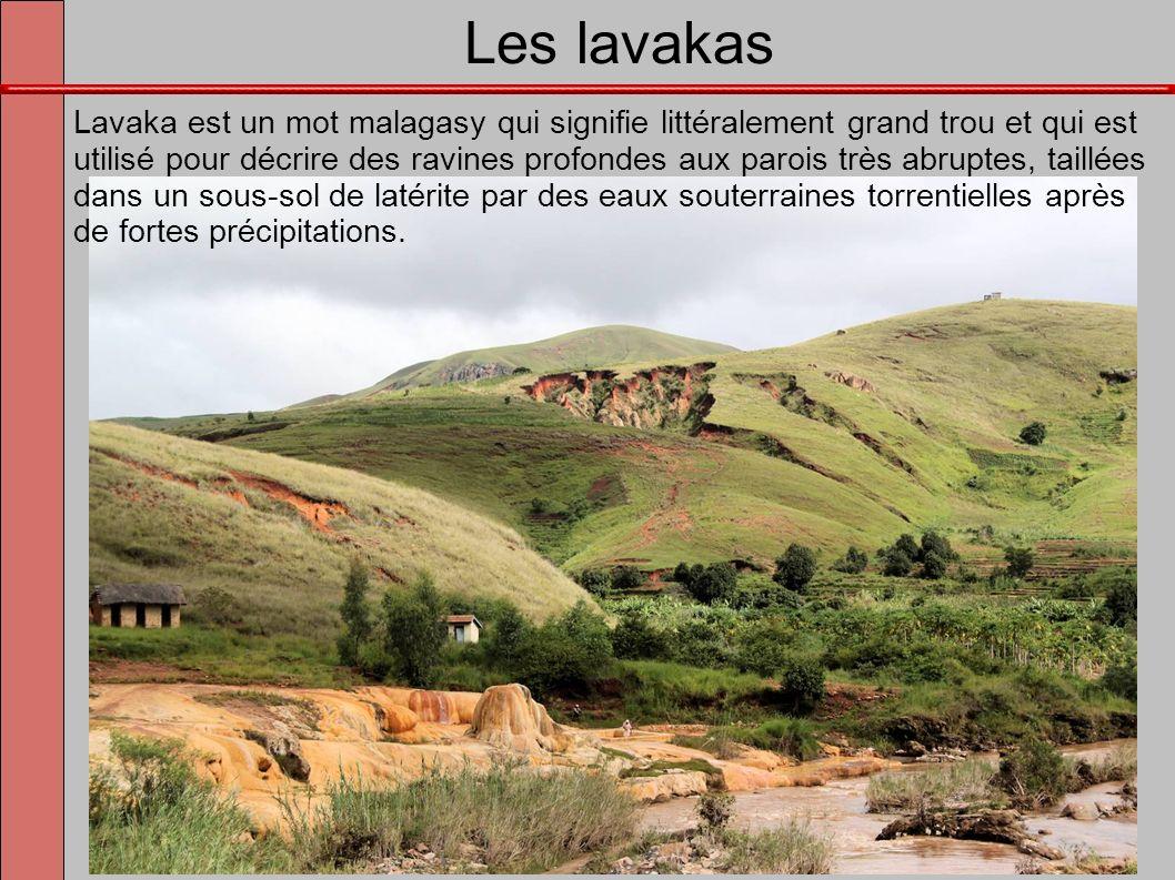 Les lavakas Lavaka est un mot malagasy qui signifie littéralement grand trou et qui est utilisé pour décrire des ravines profondes aux parois très abr