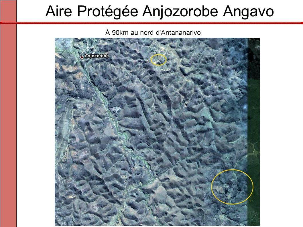 Aire Protégée Anjozorobe Angavo À 90km au nord d'Antananarivo