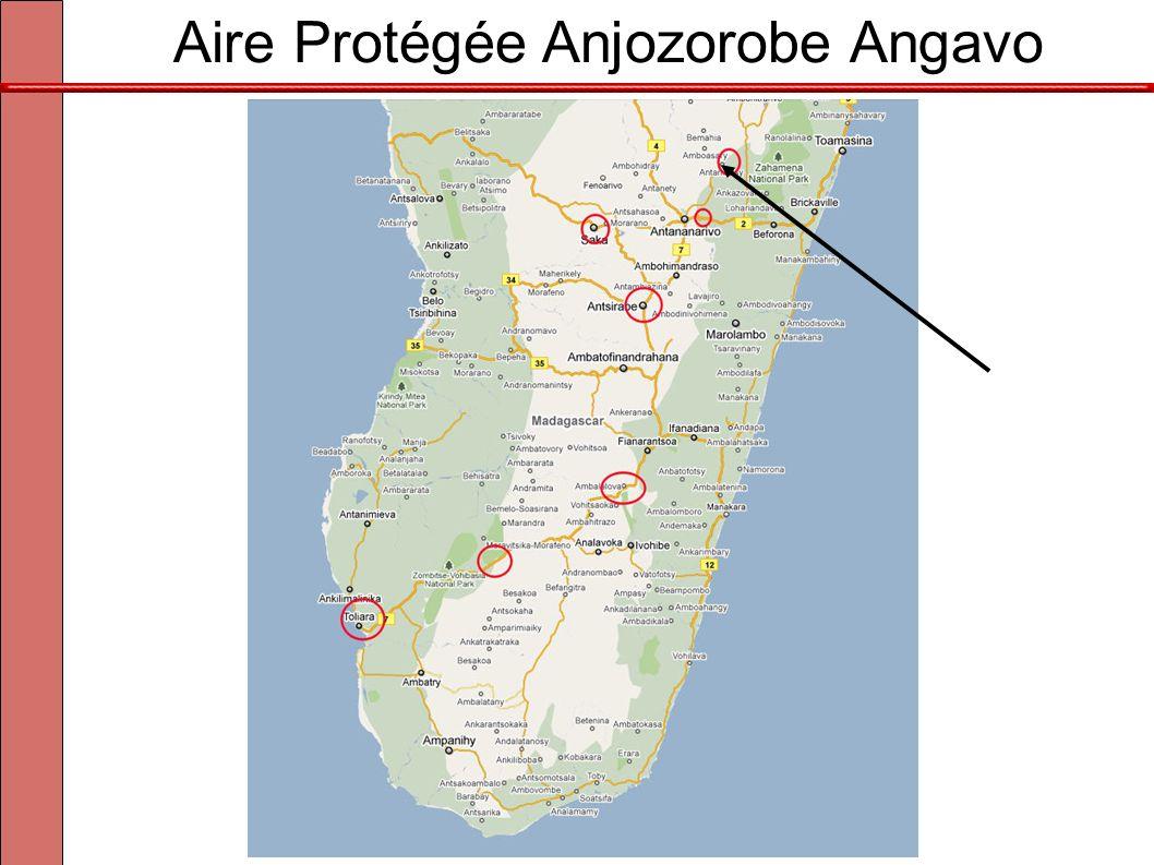 À 30km à l'est d'Antananarivo Aire Protégée Anjozorobe Angavo