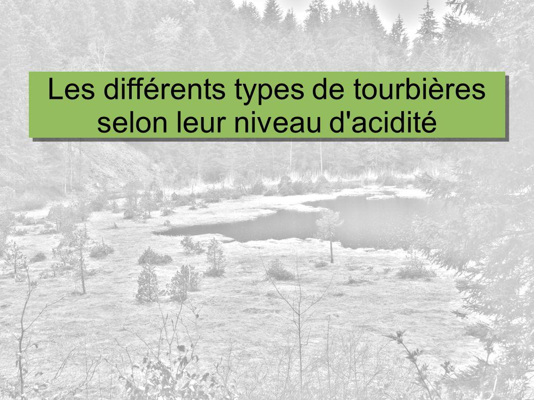 Les différents types de tourbières selon leur niveau d'acidité