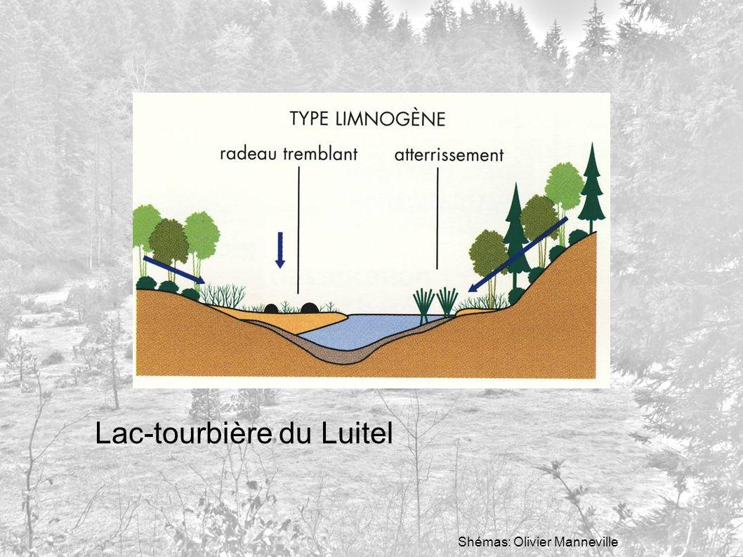 Lac-tourbière du Luitel Shémas: Olivier Manneville