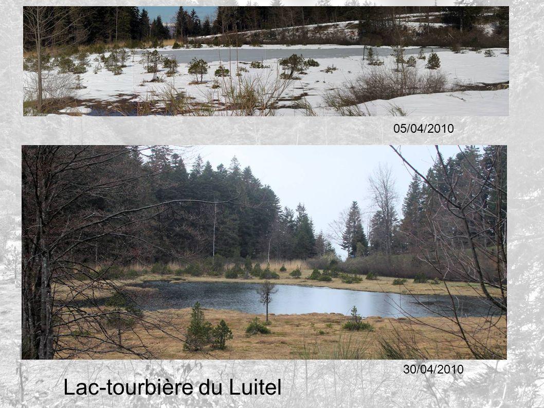 Lac-tourbière du Luitel 05/04/2010 30/04/2010
