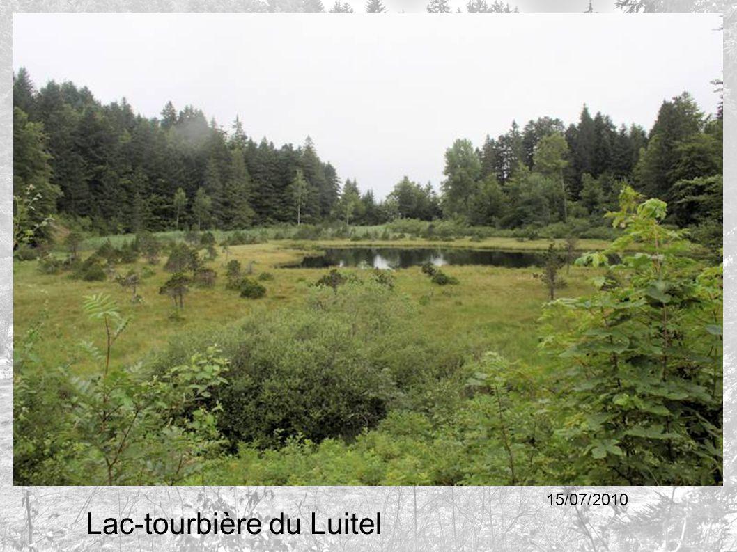 Lac-tourbière du Luitel 15/07/2010