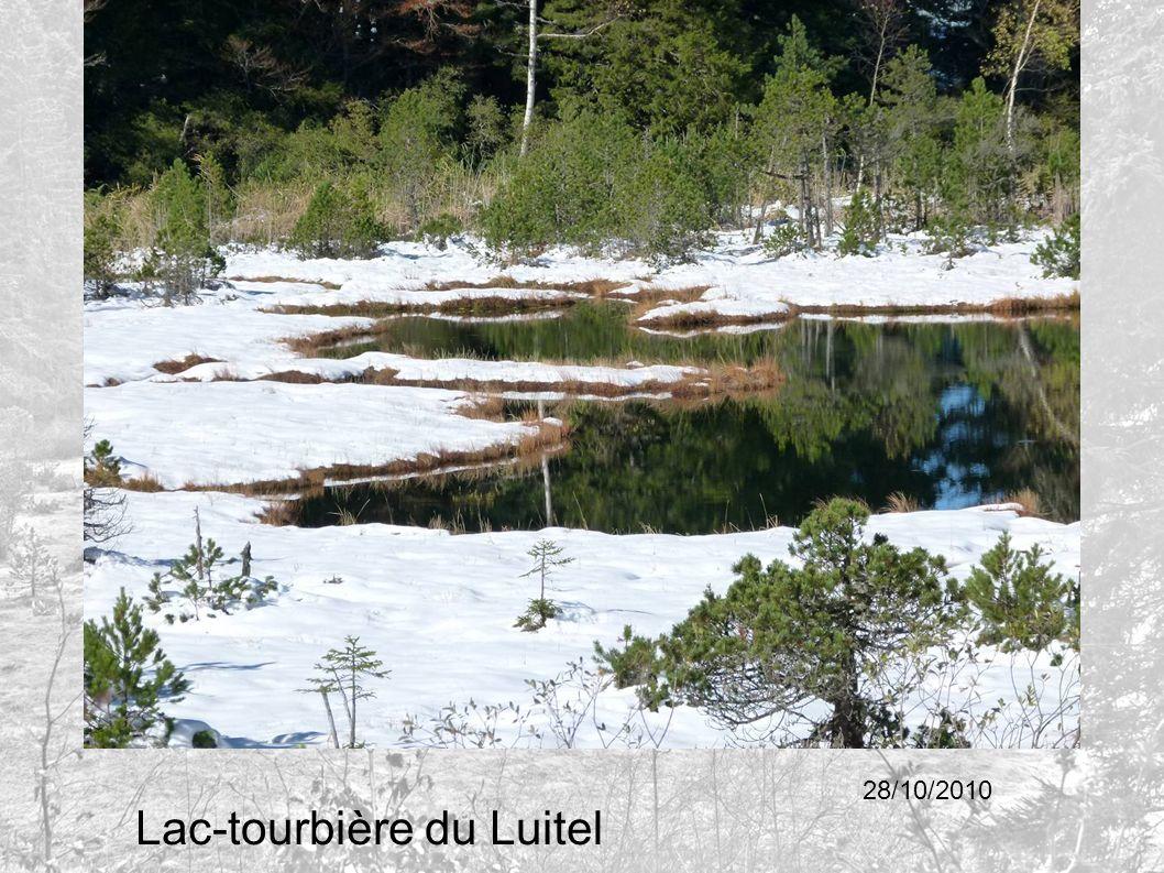 Lac-tourbière du Luitel 28/10/2010