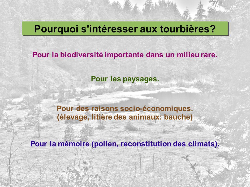 Pour la biodiversité importante dans un milieu rare. Pour les paysages. Pour des raisons socio-économiques. (élevage, litière des animaux: bauche) Pou