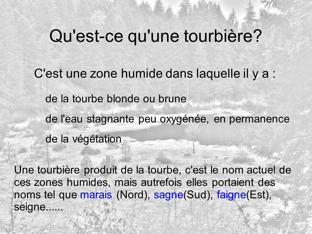 Qu'est-ce qu'une tourbière? C'est une zone humide dans laquelle il y a : de la tourbe blonde ou brune de l'eau stagnante peu oxygénée, en permanence d
