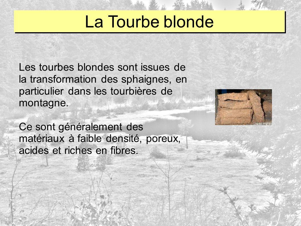 Les tourbes blondes sont issues de la transformation des sphaignes, en particulier dans les tourbières de montagne. Ce sont généralement des matériaux