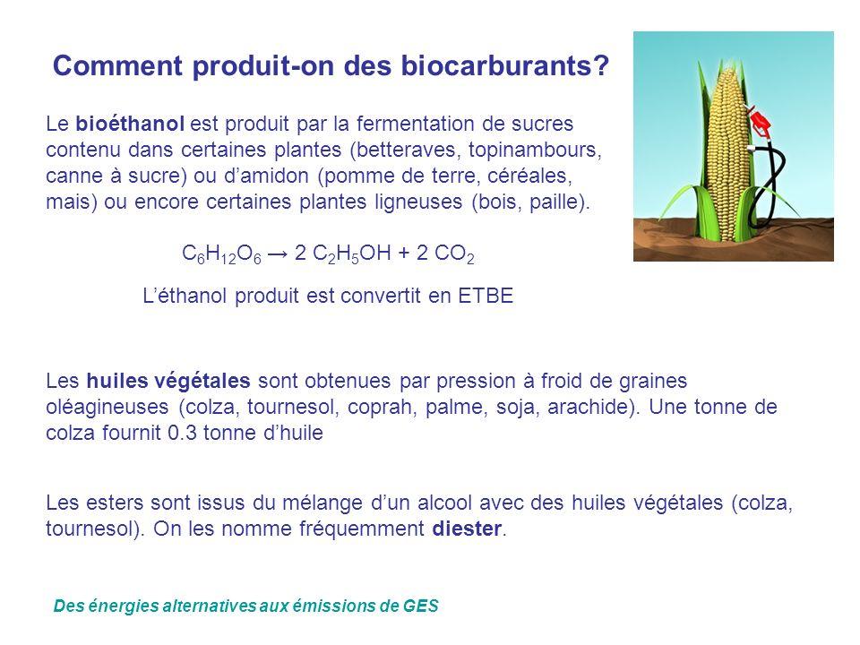 Comment produit-on des biocarburants? Le bioéthanol est produit par la fermentation de sucres contenu dans certaines plantes (betteraves, topinambours