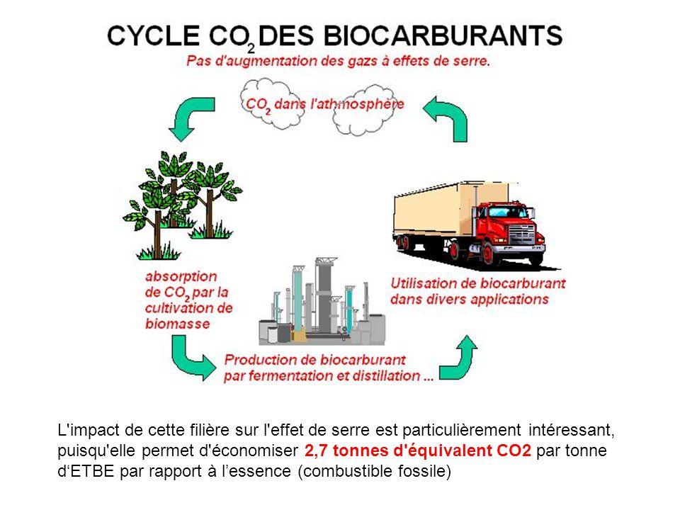 L'impact de cette filière sur l'effet de serre est particulièrement intéressant, puisqu'elle permet d'économiser 2,7 tonnes d'équivalent CO2 par tonne
