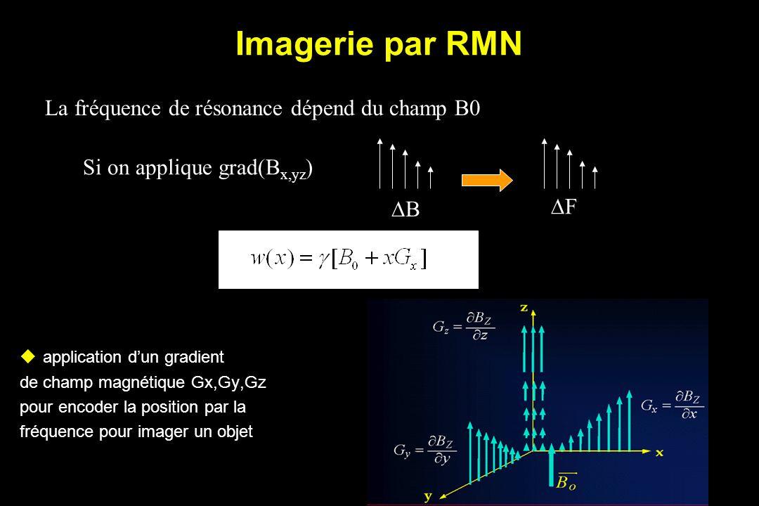 Imagerie par RMN La fréquence de résonance dépend du champ B0 Si on applique grad(B x,yz ) B F application dun gradient de champ magnétique Gx,Gy,Gz pour encoder la position par la fréquence pour imager un objet