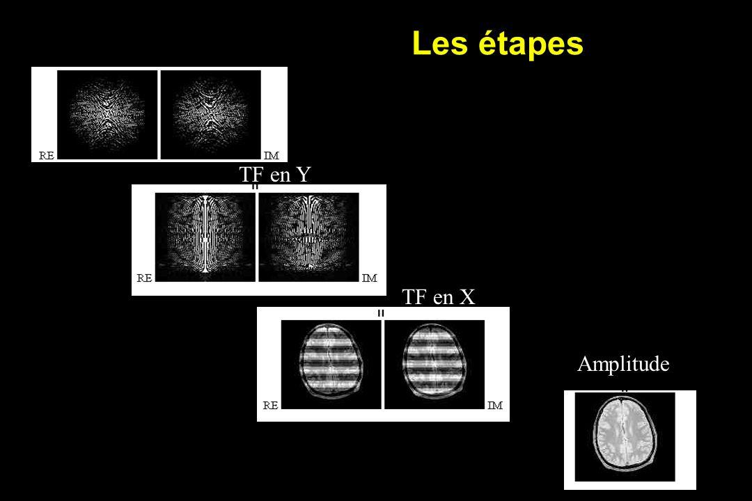 Les étapes TF en Y TF en X Amplitude