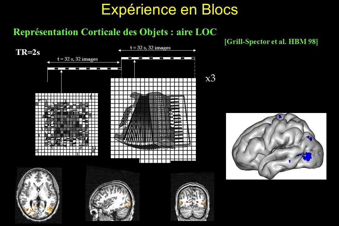 Expérience en Blocs Représentation Corticale des Objets : aire LOC t = 32 s, 32 images x3 t = 32 s, 32 images TR=2s [Grill-Spector et al.