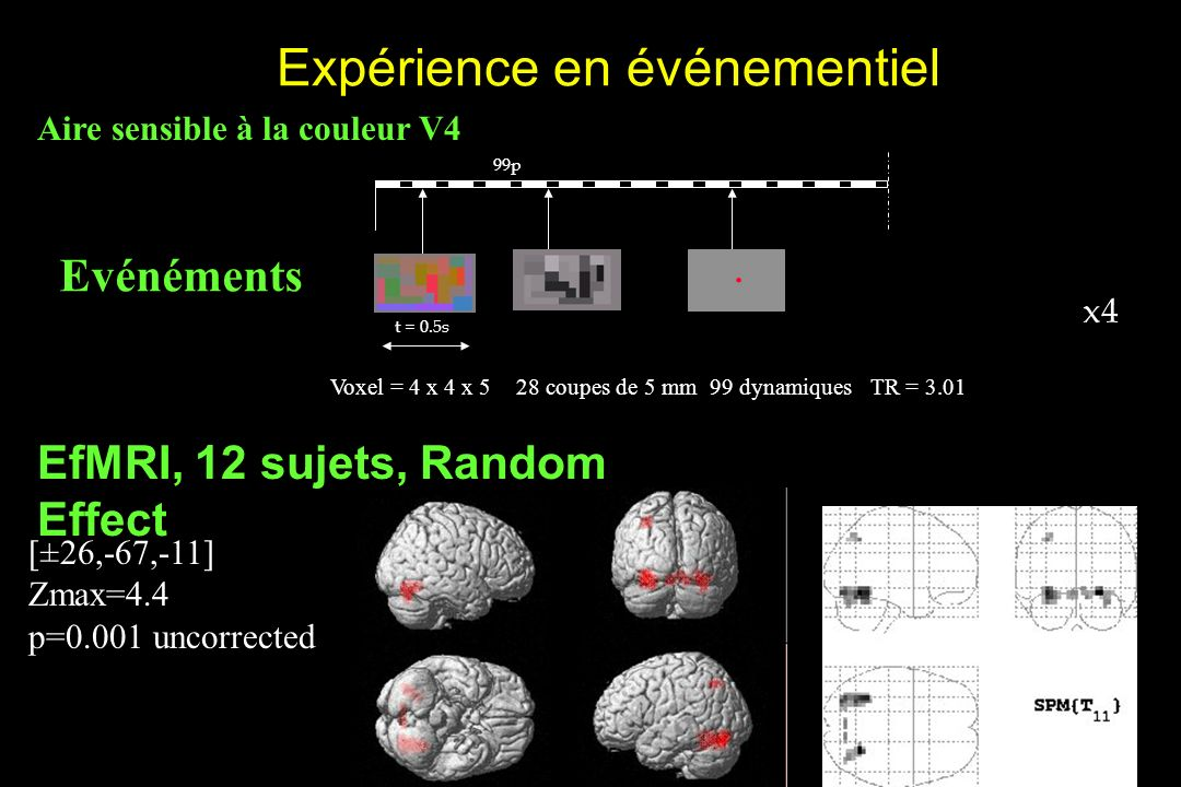 EfMRI, 12 sujets, Random Effect [±26,-67,-11] Zmax=4.4 p=0.001 uncorrected Expérience en événementiel TR = 3.0199 dynamiques28 coupes de 5 mmVoxel = 4 x 4 x 5 t = 0.5s x4 99p Evénéments.