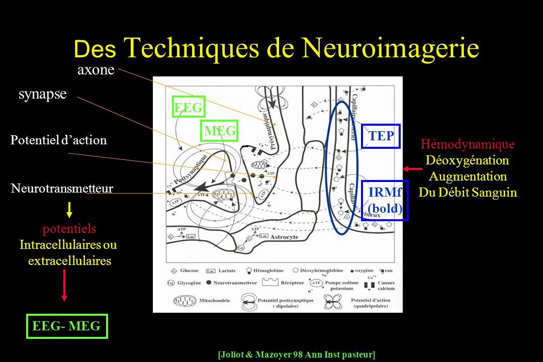 potentiels Intracellulaires ou extracellulaires Hémodynamique Déoxygénation Augmentation Du Débit Sanguin axone synapse Potentiel daction Neurotransmetteur [Joliot & Mazoyer 98 Ann Inst pasteur] EEG- MEG EEG MEG TEP IRMf (bold) Des Techniques de Neuroimagerie