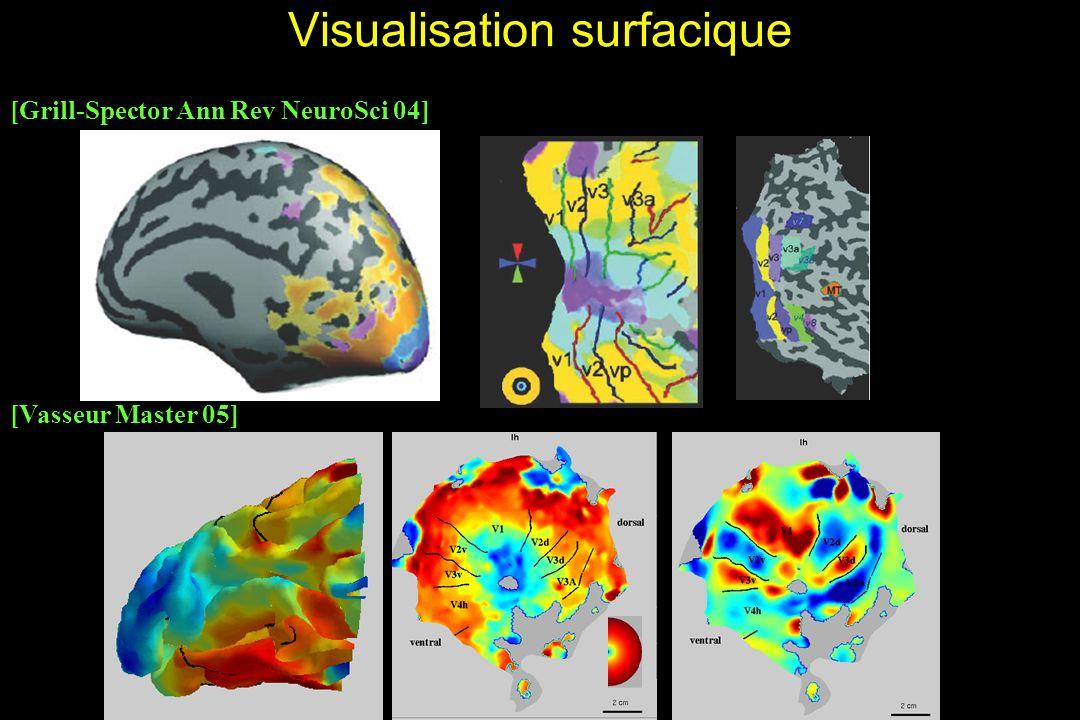 HM Visualisation surfacique [Grill-Spector Ann Rev NeuroSci 04] [Vasseur Master 05]