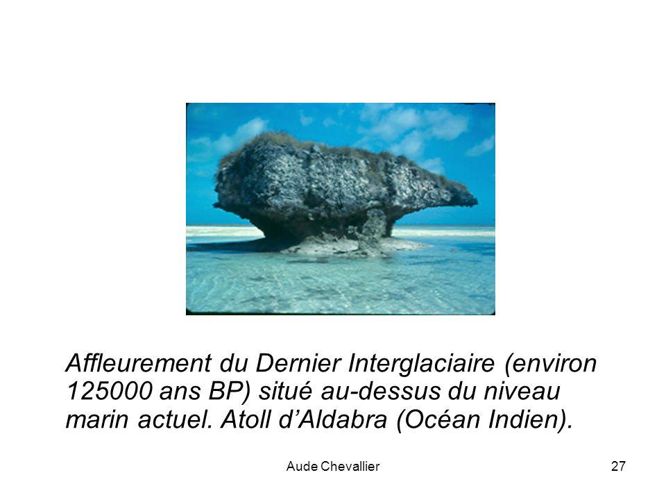Aude Chevallier27 Affleurement du Dernier Interglaciaire (environ 125000 ans BP) situé au-dessus du niveau marin actuel. Atoll dAldabra (Océan Indien)
