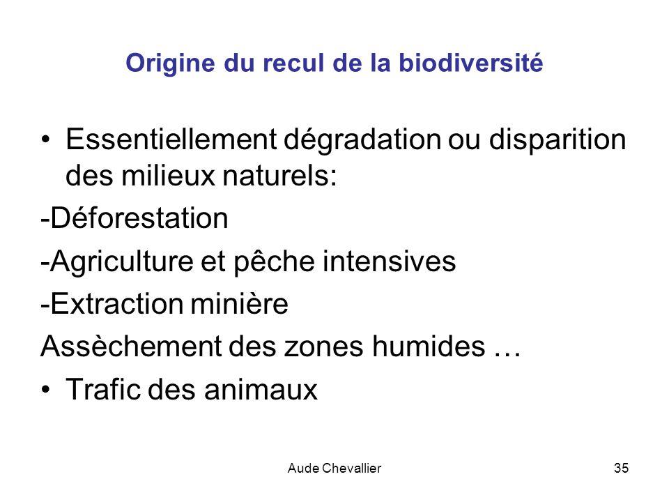 Aude Chevallier35 Origine du recul de la biodiversité Essentiellement dégradation ou disparition des milieux naturels: -Déforestation -Agriculture et