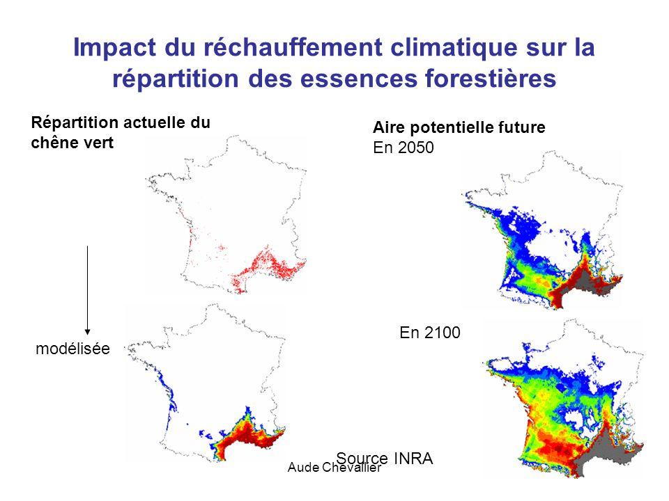 Aude Chevallier39 Impact du réchauffement climatique sur la répartition des essences forestières Répartition actuelle du chêne vert Aire potentielle f