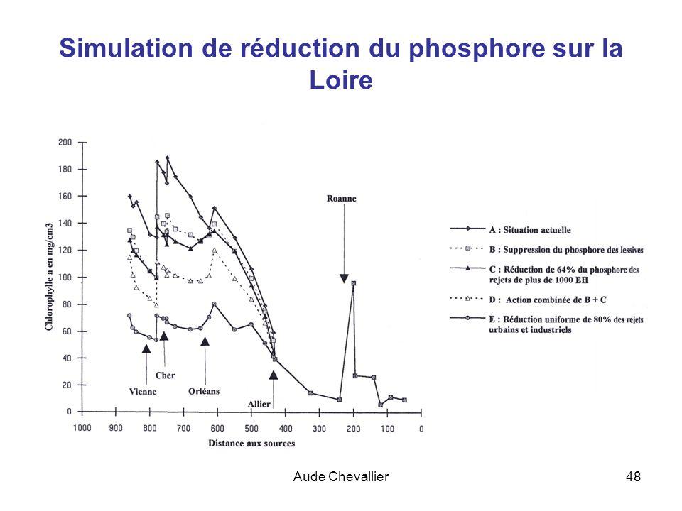 Aude Chevallier48 Simulation de réduction du phosphore sur la Loire