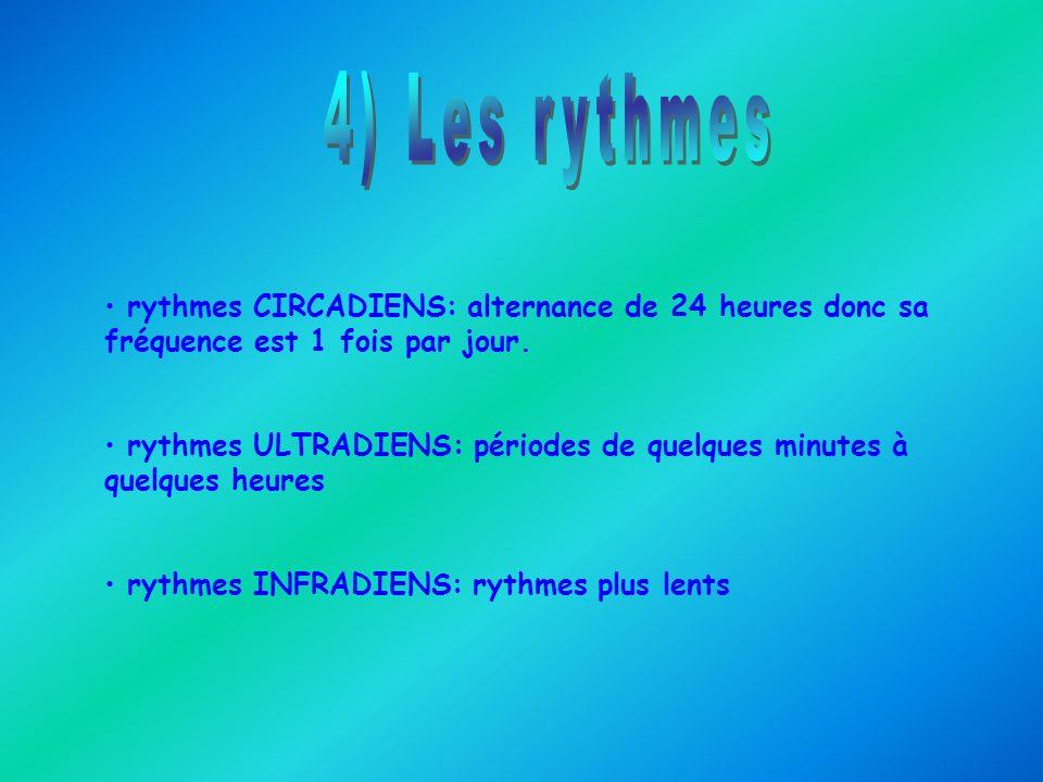 rythmes CIRCADIENS: alternance de 24 heures donc sa fréquence est 1 fois par jour. rythmes ULTRADIENS: périodes de quelques minutes à quelques heures