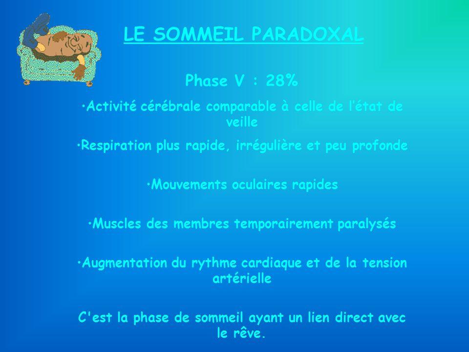 LE SOMMEIL PARADOXAL Phase V : 28% Activité cérébrale comparable à celle de létat de veille Respiration plus rapide, irrégulière et peu profonde Mouve