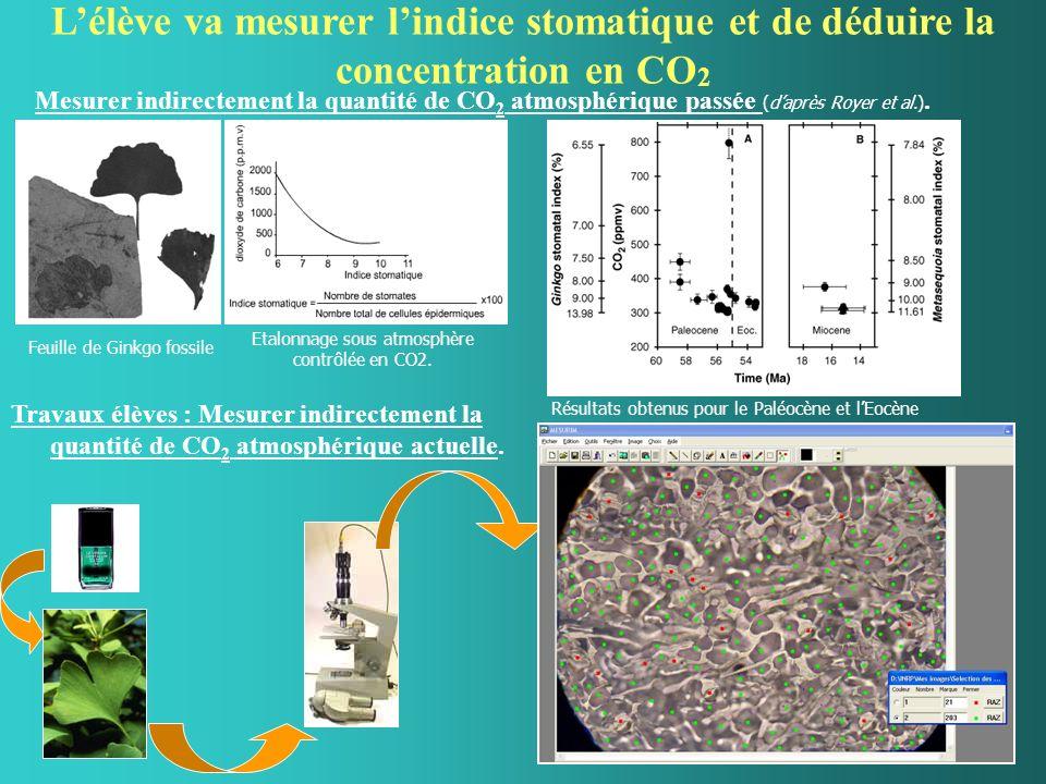 Lélève va mesurer lindice stomatique et de déduire la concentration en CO 2 Mesurer indirectement la quantité de CO 2 atmosphérique passée (daprès Royer et al.).