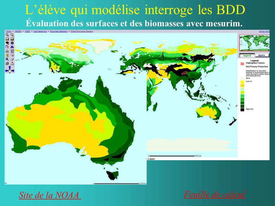 Lélève qui modélise interroge les BDD Au niveau cellulaire : le stockage du carbone dans un grain damidon Au niveau dun écosystème : la biomasse (végétale) dun champ de maïs.